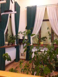 Занавески с плотными шторами